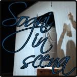 Logo Sogni in scena slider